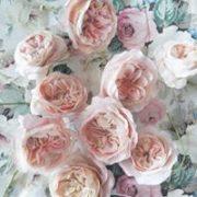 Kwiaty cukiernicze