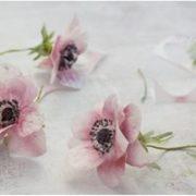 Jak zrobić kwiaty z lukru